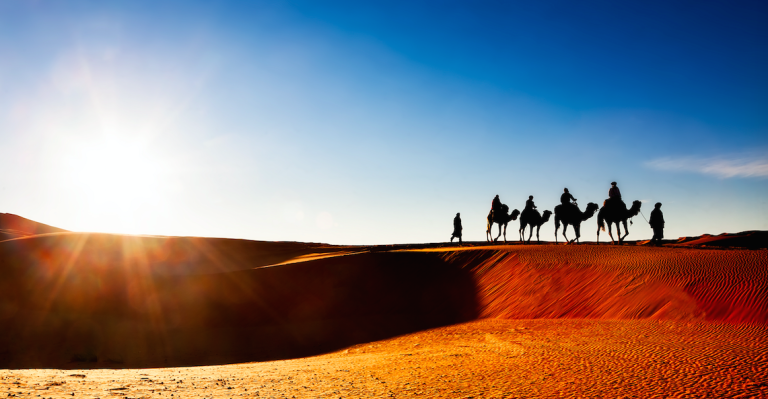 Morocco-yoga-retreat (camels)